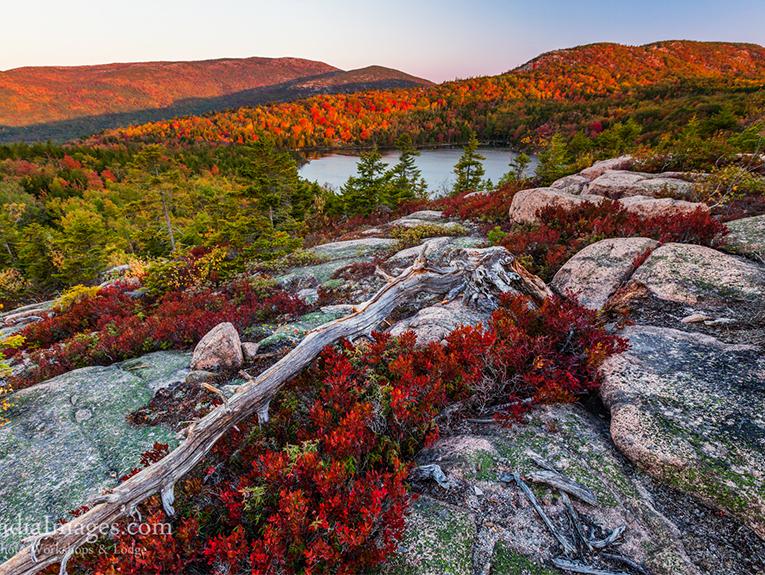 Photo of Arcadia National Park